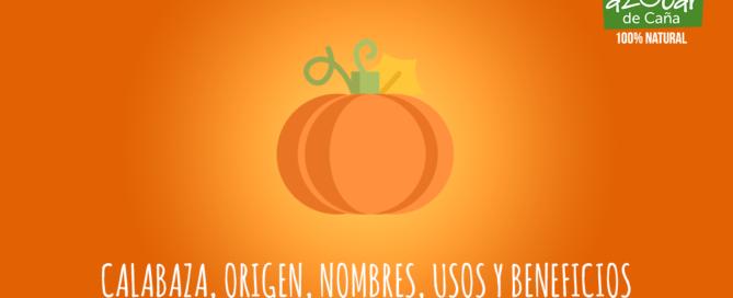Calabaza, origen, nombres, usos y beneficios.